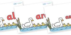 Tricky Words on Five Little Ducks