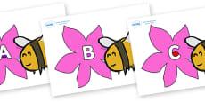 A-Z Alphabet on Bees