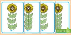 Planșe cu flori și vocabular matematic