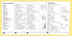 French Homophones Activity Sheet