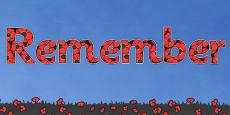 Remember Display Lettering