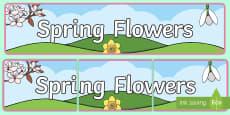 Spring Flowers Display Banner