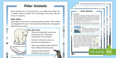 KS1 Winter Animals Differentiated Fact File