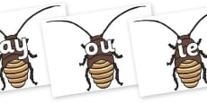 Phase 5 Phonemes on Cockroach