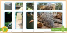 Fotos de exposición: Los animales salvajes