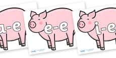Split Digraphs on Chinese New Year Pig