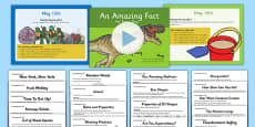 An Amazing Fact A Day May PowerPoint and Activity Sheet Pack