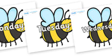 Days of the Week on Bees
