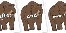 Connectives on Bear