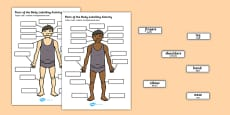 Body Parts Labelling Activity Polish Translation
