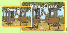 Deer Class Display Poster