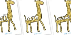 Tricky Words on Giraffes