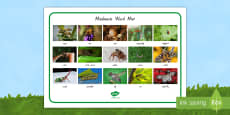 New Zealand Minibeasts Photo Word Mat