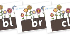 Initial Letter Blends on Flowers in Garden