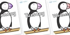 Days of the Week on Puffin to Support Teaching on The Great Pet Sale