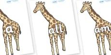 Foundation Stage 2 Keywords on Giraffe