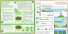 Life Cycle Lesson Plan Ideas KS1