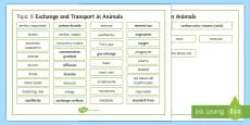 Edexcel Biology Exchange and Transport in Animals Word Mat