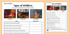 Alberta's Wildfire Types of Wildfires