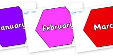 Months of the Year on Hexagons