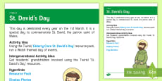 * NEW * St. David's Day Adult Guidance