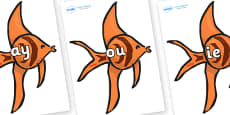 Phase 5 Phonemes on Angel Fish