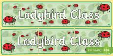 Ladybird Class Display Banner