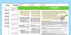 Ladybird Differentiated Reading Comprehension Activity Arabic Translation