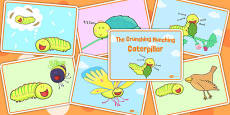 Story Sequencing Cards to Support Teaching on The Crunching Munching Caterpillar
