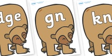 Modifying E Letters on Brown Bear to Support Teaching on Brown Bear, Brown Bear