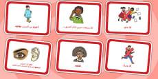 Fire Alarm Instructions Cards Sentences Arabic Translation