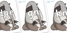 Silent Letters on Anteater to Support Teaching on The Great Pet Sale