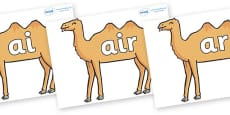 Phase 3 Phonemes on Camels