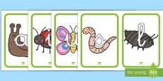 Tarjetas de fonemas: Bichos