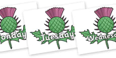 Days of the Week on Thistles