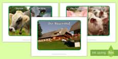 * NEW * Farm Animals Display Posters German
