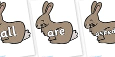 Tricky Words on Rabbit