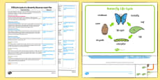 EYFS Life Cycle of a Butterfly Discovery Sack Plan and Resource Pack