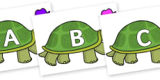 A-Z Alphabet on Tortoise