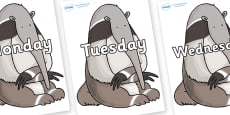 Days of the Week on Anteater to Support Teaching on The Great Pet Sale