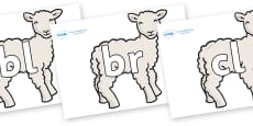 Initial Letter Blends on Lambs