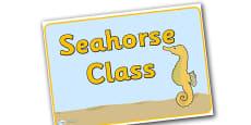 Seahorse Group Display Posters