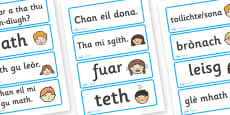 Scottish Gaelic Feelings Word Cards