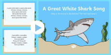 A Great White Shark Song PowerPoint