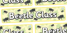 Beetle Themed Classroom Display Banner