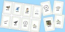 QU Flash Cards