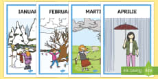 * NEW * Lunile anului - Planșe