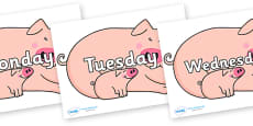Days of the Week on Hullabaloo Pigs to Support Teaching on Farmyard Hullabaloo
