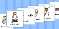 Good Listening Cards Arabic