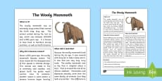 * NEW * All About The Woolly Mammoth Fact File